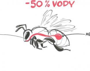 Nezkreslená věda – Včely